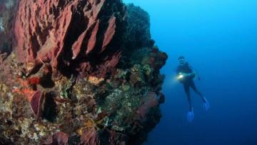 club de plongée à Bidart